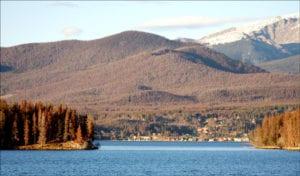 Colorado Beetle Kill Pine Trees & Lake